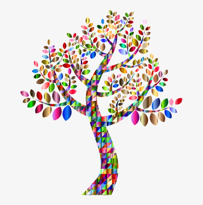 Genealogy Family Tree Family Tree Branch - Colorful Tree Transparent