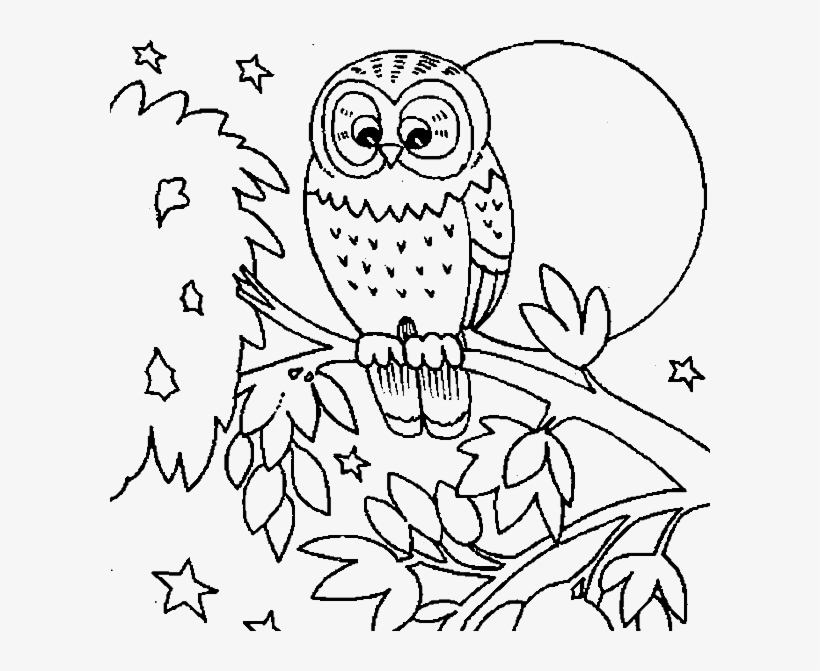 Owl Colouring Sheets Cute Owl Coloring Pages Getcoloringpages - Owls