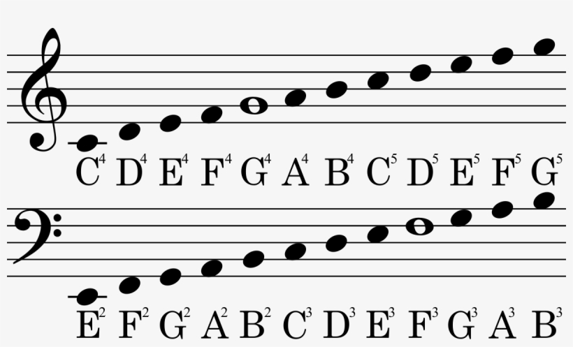 Sheet Music Notes Guide - Bass Clef - 1200x669 PNG Download - PNGkit
