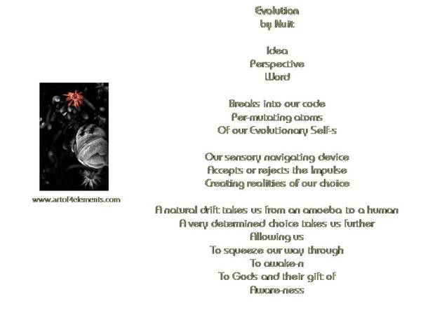 Element Poems
