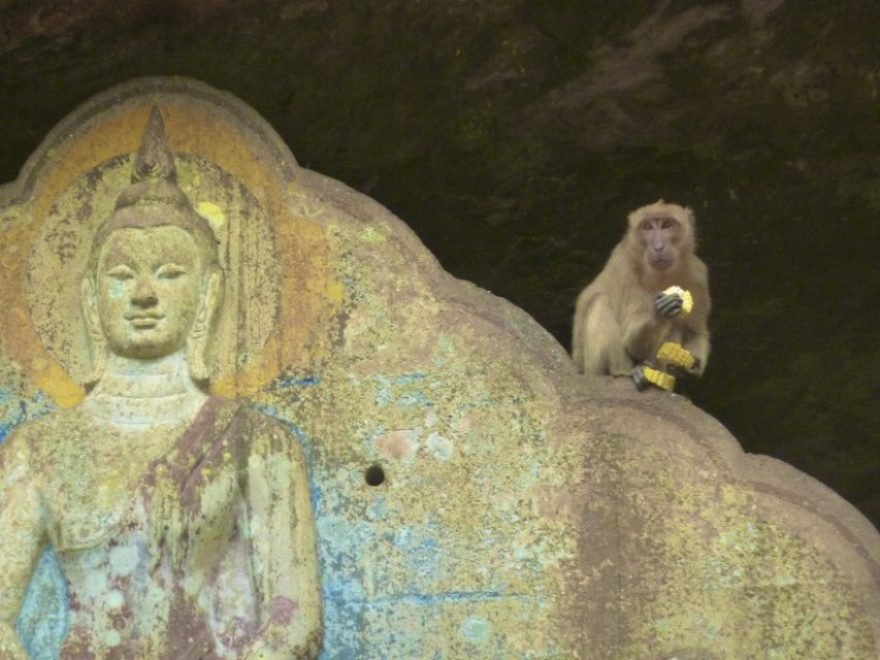 Suwankuha Temple, which is also known as the 'Monkey Caves outside of Phuket, Thailand
