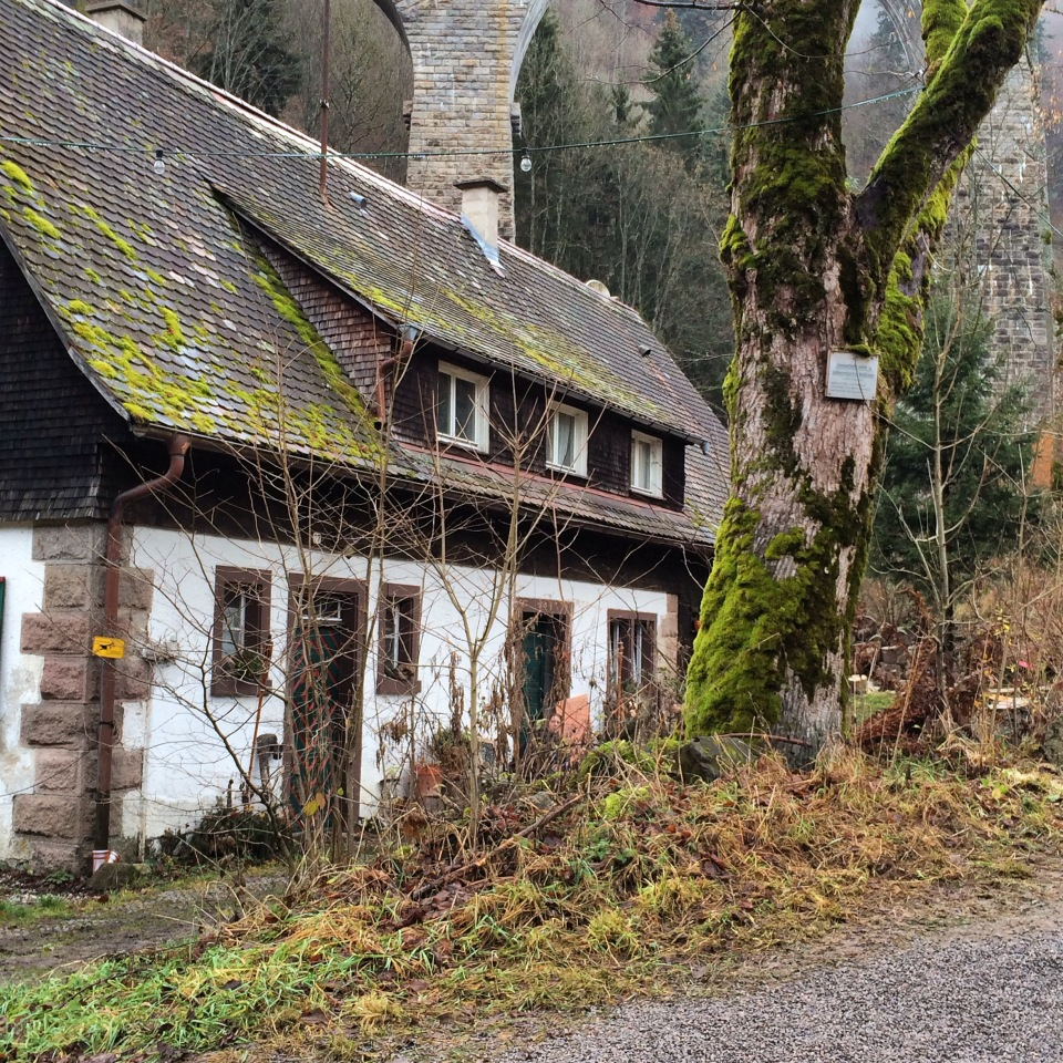 Hansel and Gretel's Black Forest near Breisach, Germany