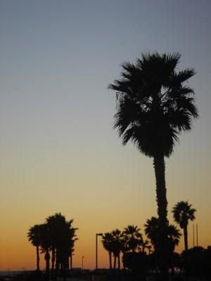 ventura sunset california beach