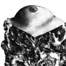 Detail of the cover art of Against Me!
