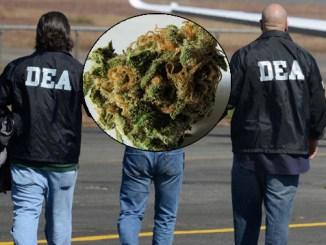 DEA_AGENTS