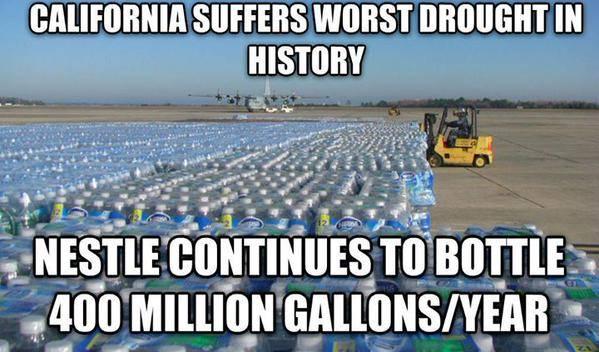 California Nestle