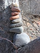 Cairns in tree