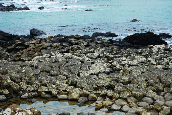 Giant's Causeway Rocks, Northern Ireland