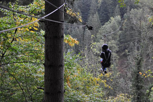 Black Forest Ziplining