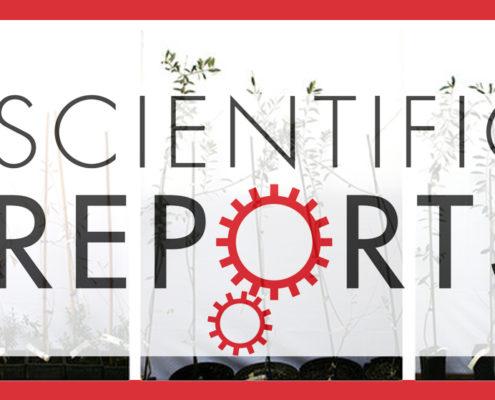 Scientific Reports Archivi - POnTE Project - scientific report