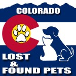 How to use Facebook to find your lost pet