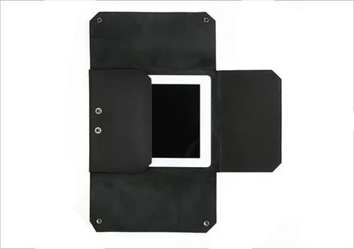 Autum Turncoat iPad 2 Case