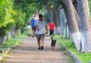 Llama IMSS Colima a continuar con práctica deportiva, ejercicio y cultura física en emergencia sanitaria