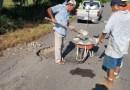 Llevan a cabo programa de bacheo en carretera de Coahuayana de Hidalgo y Zapotán
