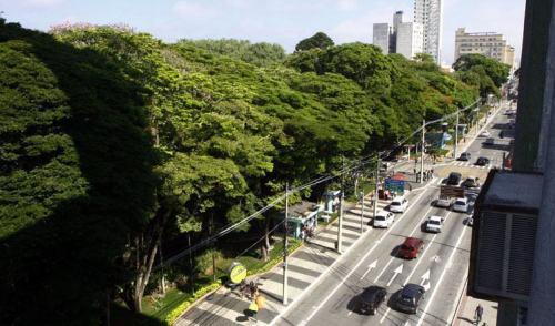 Dia Internacional da Mulher tem atividades especiais em São José