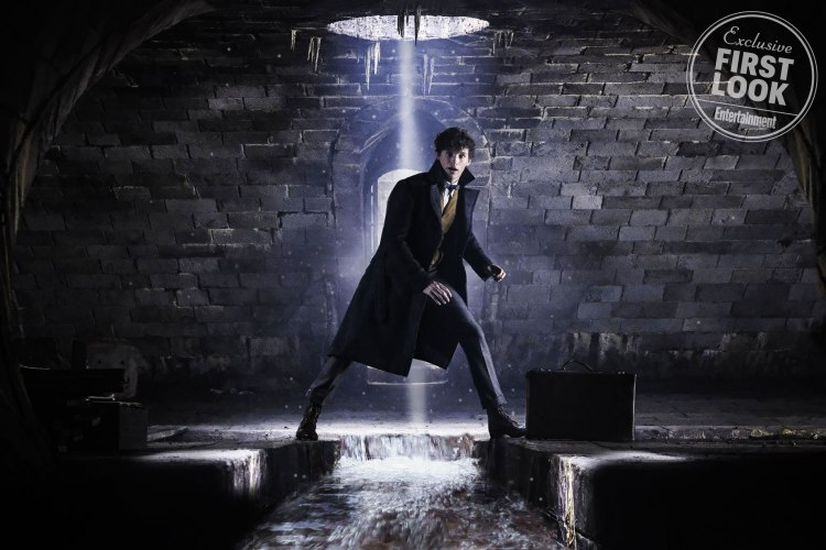 FANTASTIC BEASTS: THE CRIMES OF GRINDELWALD EDDIE REDMAYNE as Newt Scamander