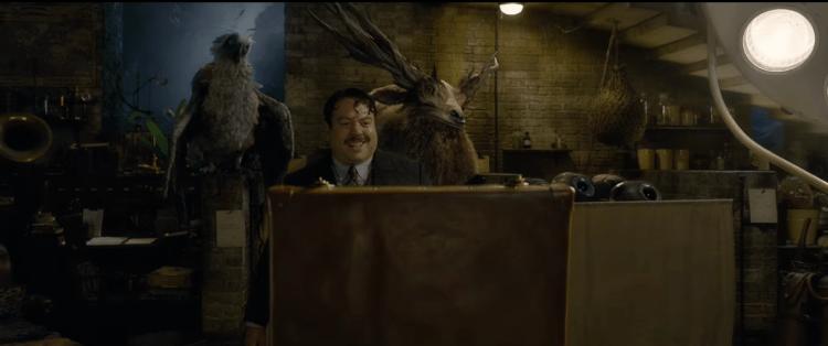 fantastic-beasts-2-trailer-images-15