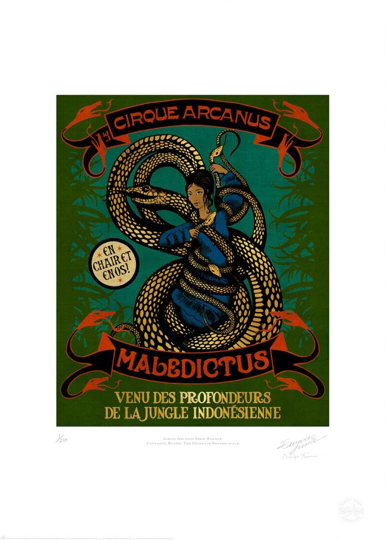 CIRCUS_ARCANUS_SHOW_BANNER_MALEDICTUS_MINALIMA
