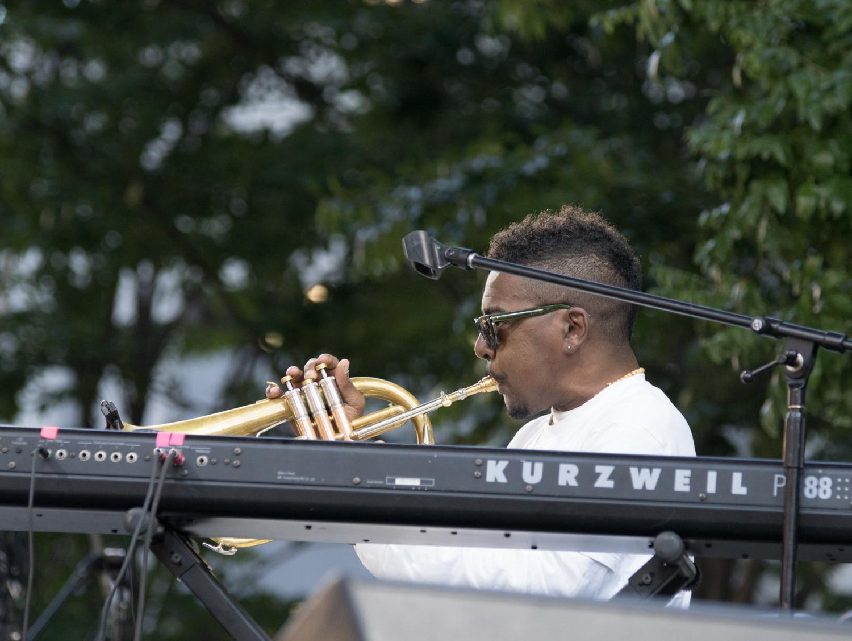 Detroit Jazz fest 2016 Sunday-06653