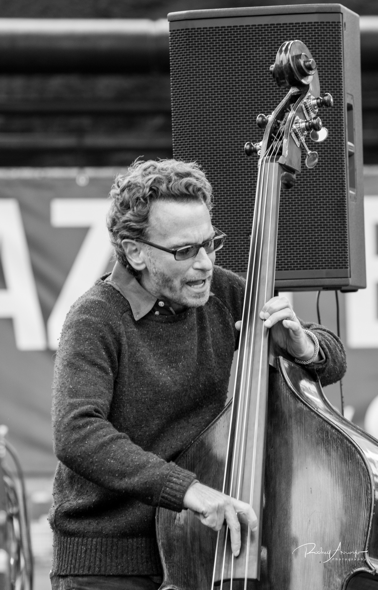 Detroit Jazz Fest 2017-05628-1504440860600