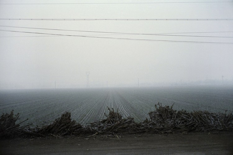 TAINTED_LANDSCAPES2