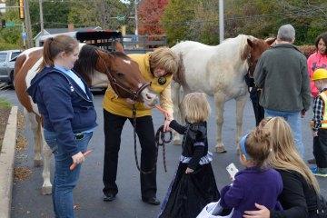 naperville-plaza-horse-web_DSC1698