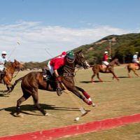 "Video: #Petaluma's Cerra Pampa Draws Internationally for the ""The Game of Kings"""