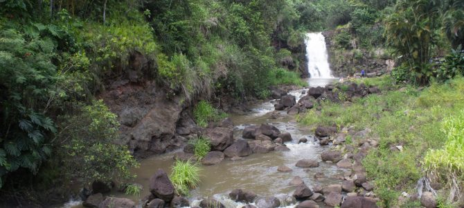 Waimea Valley: A Step Back in Time