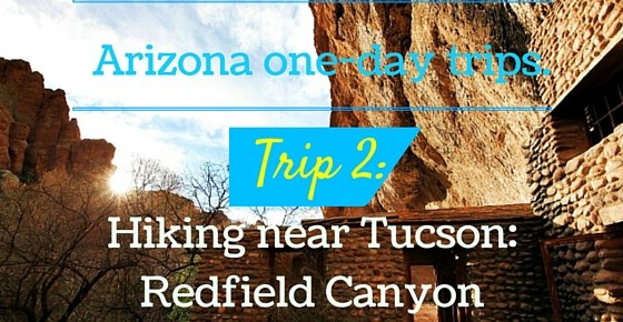 Hiking near Tucson: Redfield Canyon – The place time has forgotten