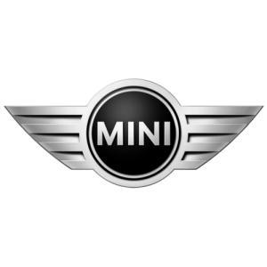 Mini Distributieriem Vervangen bij Auto Potgieter