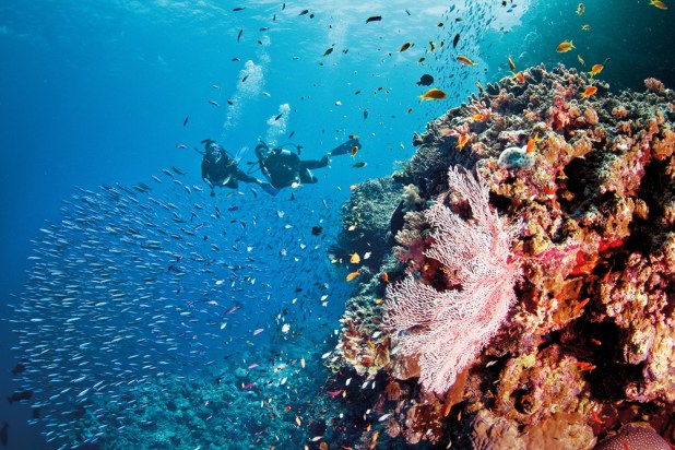 liveaboard-diving-the-great-barrier-reef Top 10 Places to Visit in 2014