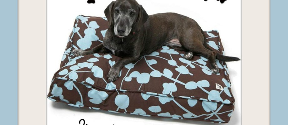 Molly Mutt Dog Bed Duvet Giveaway