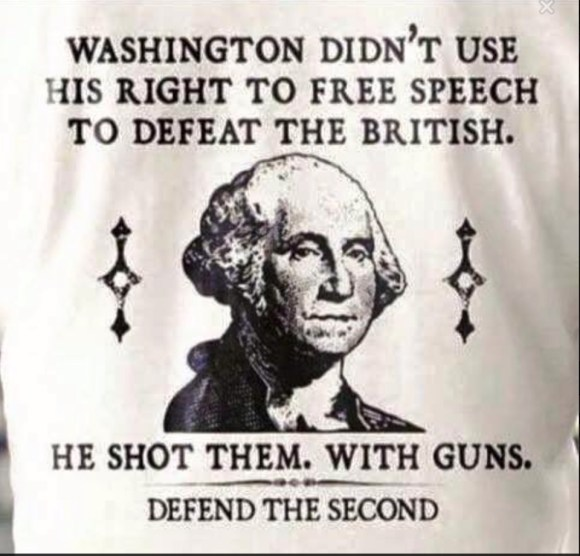 Washington's Guns copy