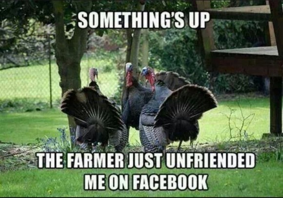 Facebook Thanksgiving copy