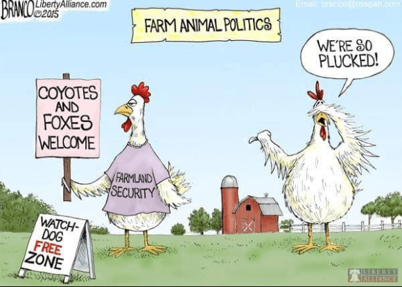 Farm Animal Politics