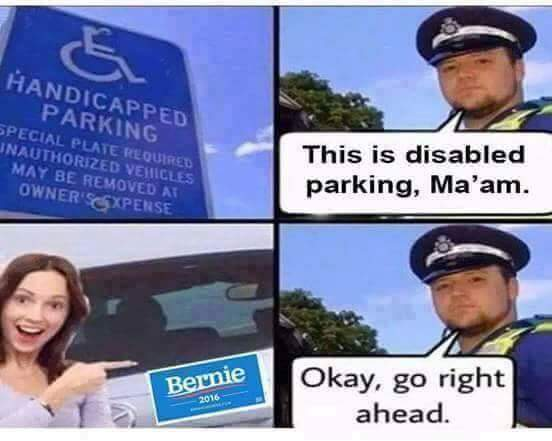Bernie Disable