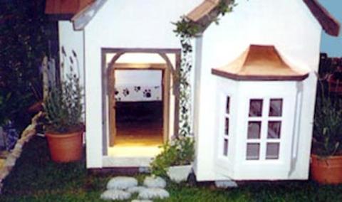 Dog House 10