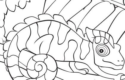 spring-chameleon-lizard-coloring-page-printable-photo-420x420 (1)