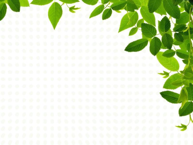 nature powerpoint template - Pinarkubkireklamowe