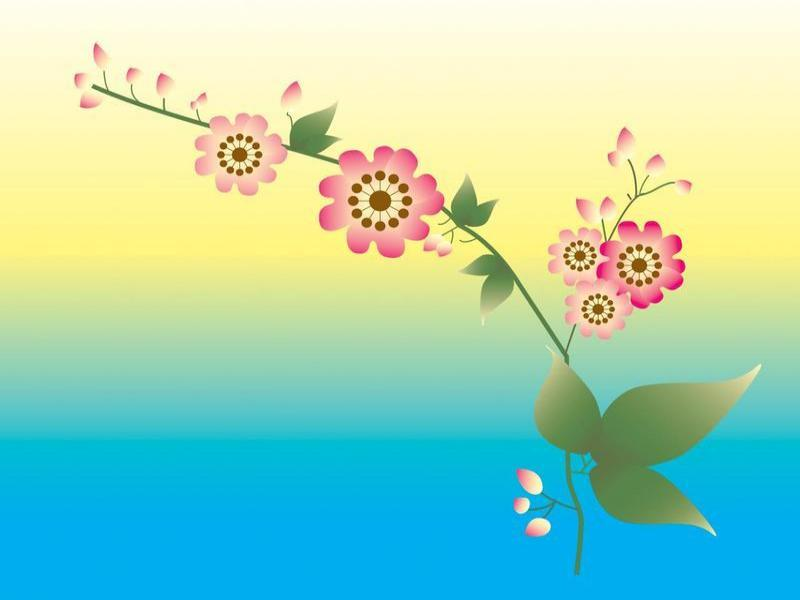Blue Yellow Pink Flower Backgrounds Presnetation - PPT Backgrounds - blue flower backgrounds