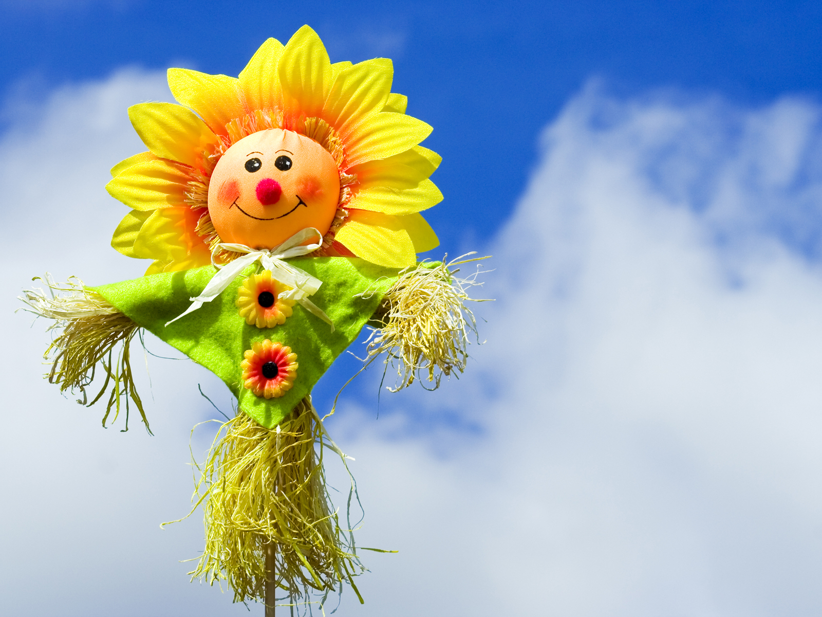 Cute Red Blue And Yellow Hd Graphic Flowers Wallpaper Cute Scarecrow Backgrounds Presnetation Ppt Backgrounds