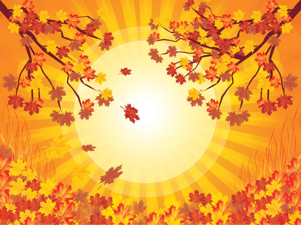 Fall Feather Wallpaper Yellow Tree Autumn Backgrounds Nature Templates Free