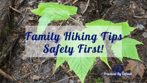 Family Hiking Tips-Safety First!