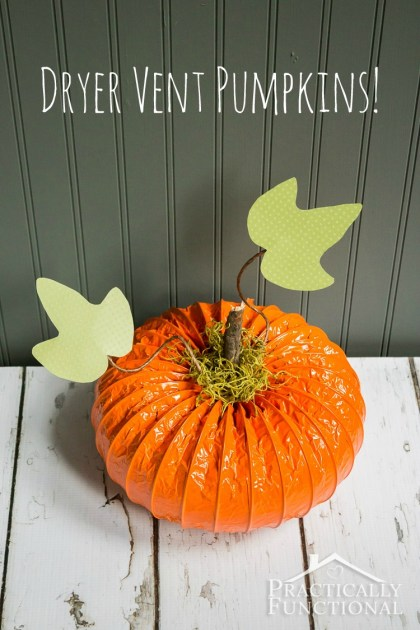 Adorable dryer vent pumpkins! Just need dryer vent hose, spray paint, and a stem and leaves!