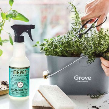 FREE Mrs Meyer\u0027s Cleaning Products  Caddy From Grove Collaborative!