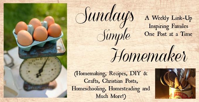 new homemaker slide