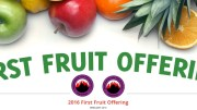 FIRST FRUIT OFFERING - MFM