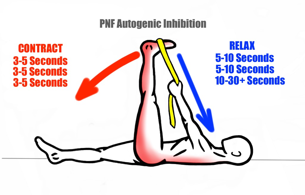 The Art of Stretching - PreHab Exercises