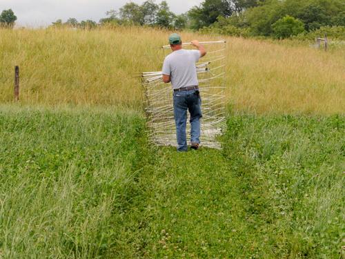 Rotational grazing Image Source    wwwpremier1supplies - farmer resume