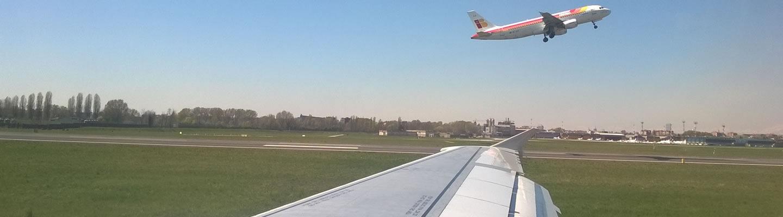 wing-2
